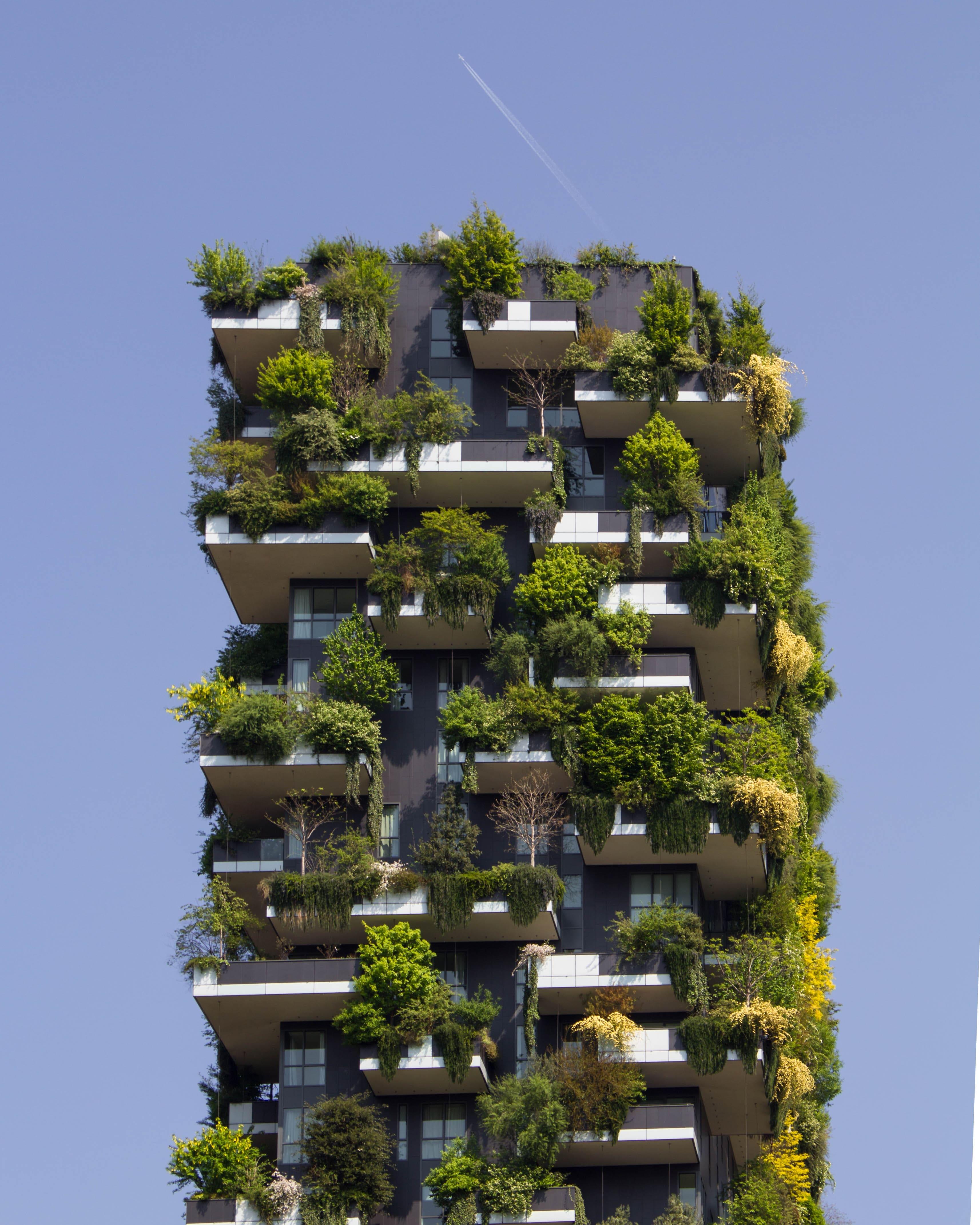 esencia-arquitectura-organica